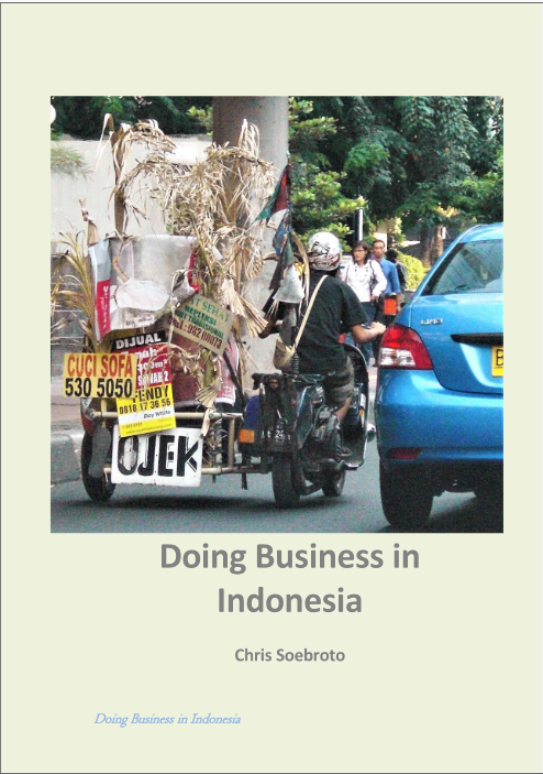 Free e-book Doing Business in Indonesian